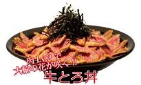花びら丼(牛とろ丼肉Lv.3)
